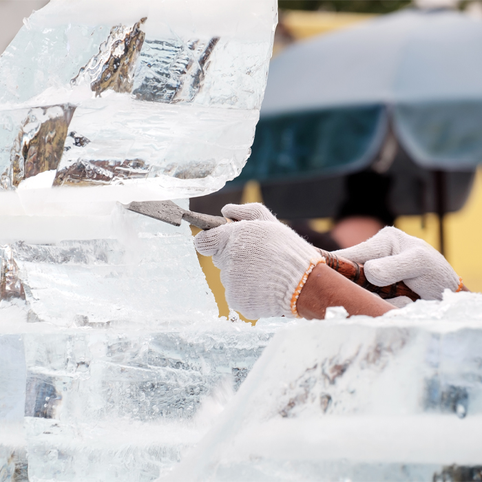 Clinic ice carving #OpPapendal