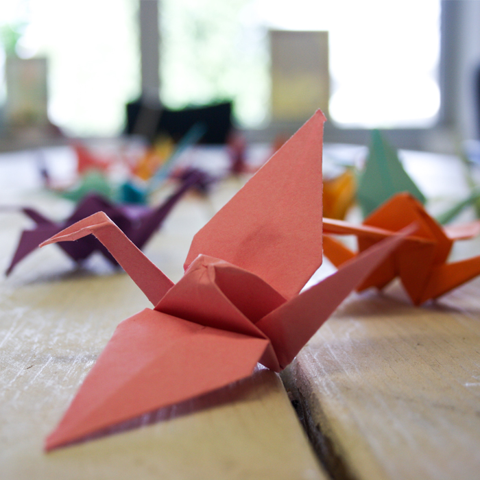 Clinic Origami #OpPapendal